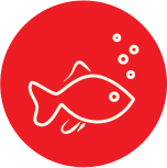 Anima-Strath Icon Fish