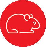 Anima-Strath Icon Hamster
