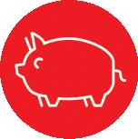Anima-Strath Icon Pig