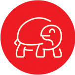 Anima-Strath Icon Tortoise
